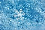 Snowflake Fairytale