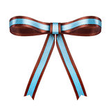 brown with blue satin bow on the isolated white background