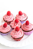 Tasty raspberry cupcakes