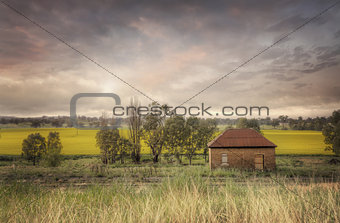 Abandoned Railway Shed Cowra