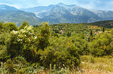 Summer mountain landscape (Greece)