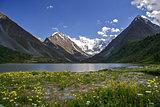 Altai mountain Belukha