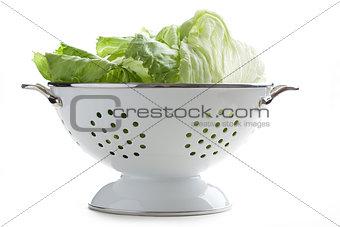 green lettuce in colander