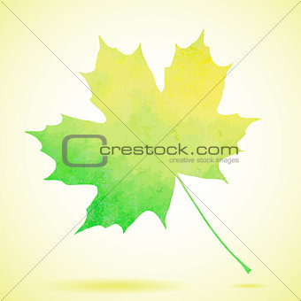 Green watercolor painted vector autumn maple leaf background