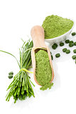 Wheatgrass powder and pills. Superfood.
