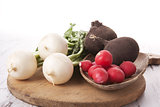 Colorful radish background.