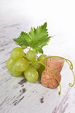 Green wine grapes with champagne cork.