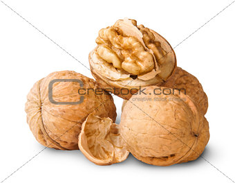 Small Pile Of Walnuts And Shells