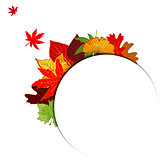 Thanksgiving Colorful Autumn Leaf Background