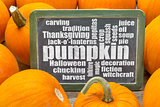 pumpkin word cloud