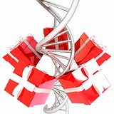 DNA structure model and gifts