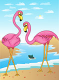 Flamingos and fish