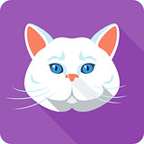 Vector white british Cat icon flat design
