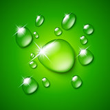 Transparent water drop on green background
