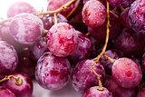 Red ripe grape over white