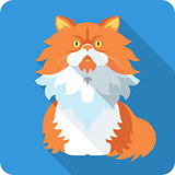 Vector Persian Cat icon flat design