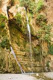 Ein Gedi spring, Israel.