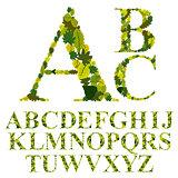 Font made with leaves, floral alphabet letters set, vector desig