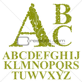 Font made with leaves, floral alphabet letters set, vector desig