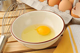 natural raw egg