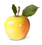 Juicy Apple With Green Leaves