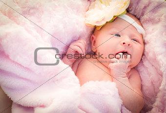 Beautiful Newborn Baby Girl Laying in Soft Blanket