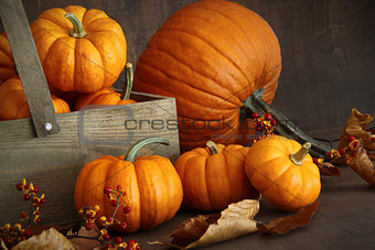Small pumpkins with wooden box