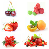 Set various berries (strawberries, raspberry, currant, cherry, apricots)