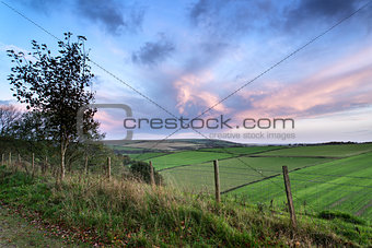 Beautiful Autumn forest and fields during sunrise landscape