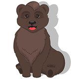 Illustration of sitting bear on white background