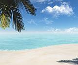 tropical beach 3