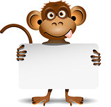 monkey with a white background