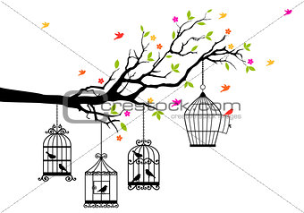 free birds and birdcages, vector