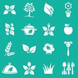 Vegetarian icons