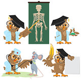 Set Owl doctor and mouse
