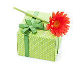Orange gerbera flower over gift box