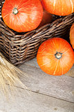 Ripe small pumpkins in basket