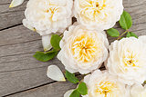 Wooden background with fresh rose flowers