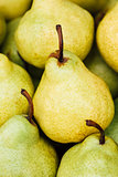 Green And Yellow Ripe Pears Background