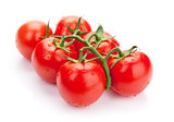 Fresh ripe clean tomatoes with water drops