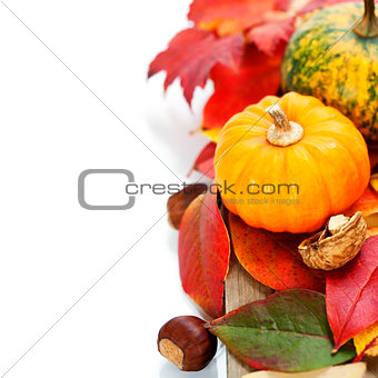 Autumn composition