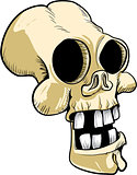 Cartoon skull with big teeth