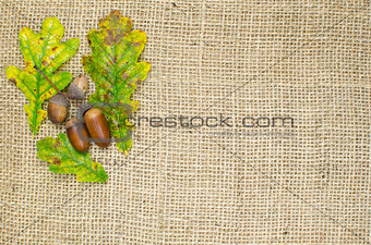 Fall still life decoration
