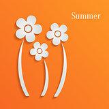 Summer white flowers on orange background