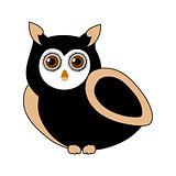 owl- bird of prey