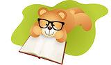Teddy bear lying down reading a book