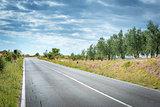 Road landscape Tuscany