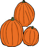 Three Isolated Pumpkins