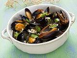 rustic black mussel in garlic white wine sauce