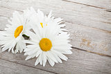 Daisy camomile flowers on wooden table